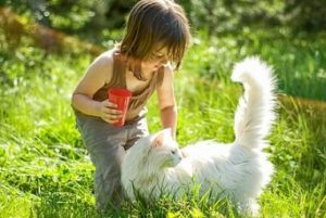child with cat outside