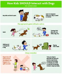 How Kids Should Interact With Dogs Poster