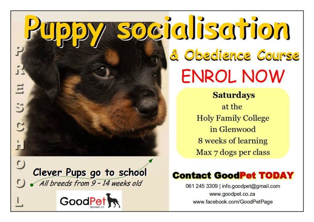 GoodPet Durban Puppy Socialisation and obedience course