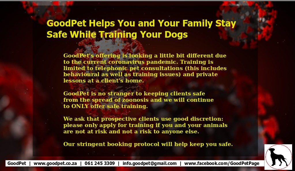 GoodPet's statement regarding dog training offered in a and around Durban area during the covid-19 pandemic